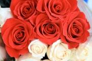 flowersproduce49